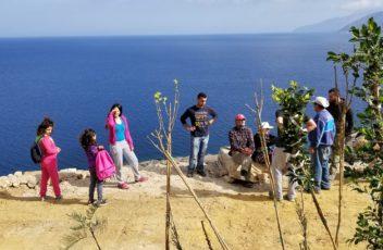 Planting in Thimena Greece